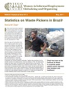 Statistics Waste Pickers Brazil